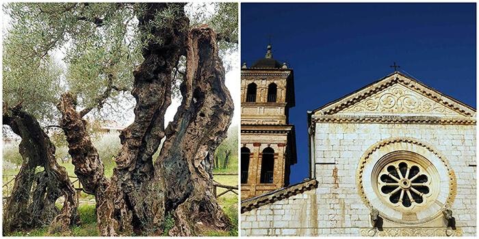 Trevi, una città caratterizzata dal dominio longobardo e dal ducato di Spoleto