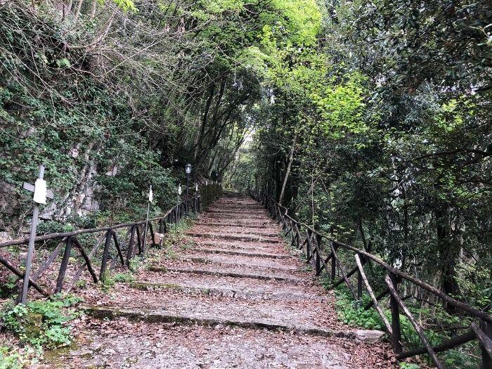 Speco di San Francesco a Narni. Il santo e il viaggio in Umbria 2