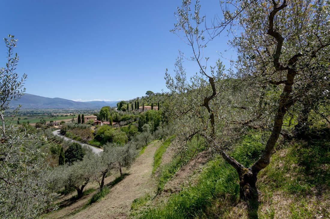 """Trekking in Umbria con """"I Tuoi Cammini"""""""